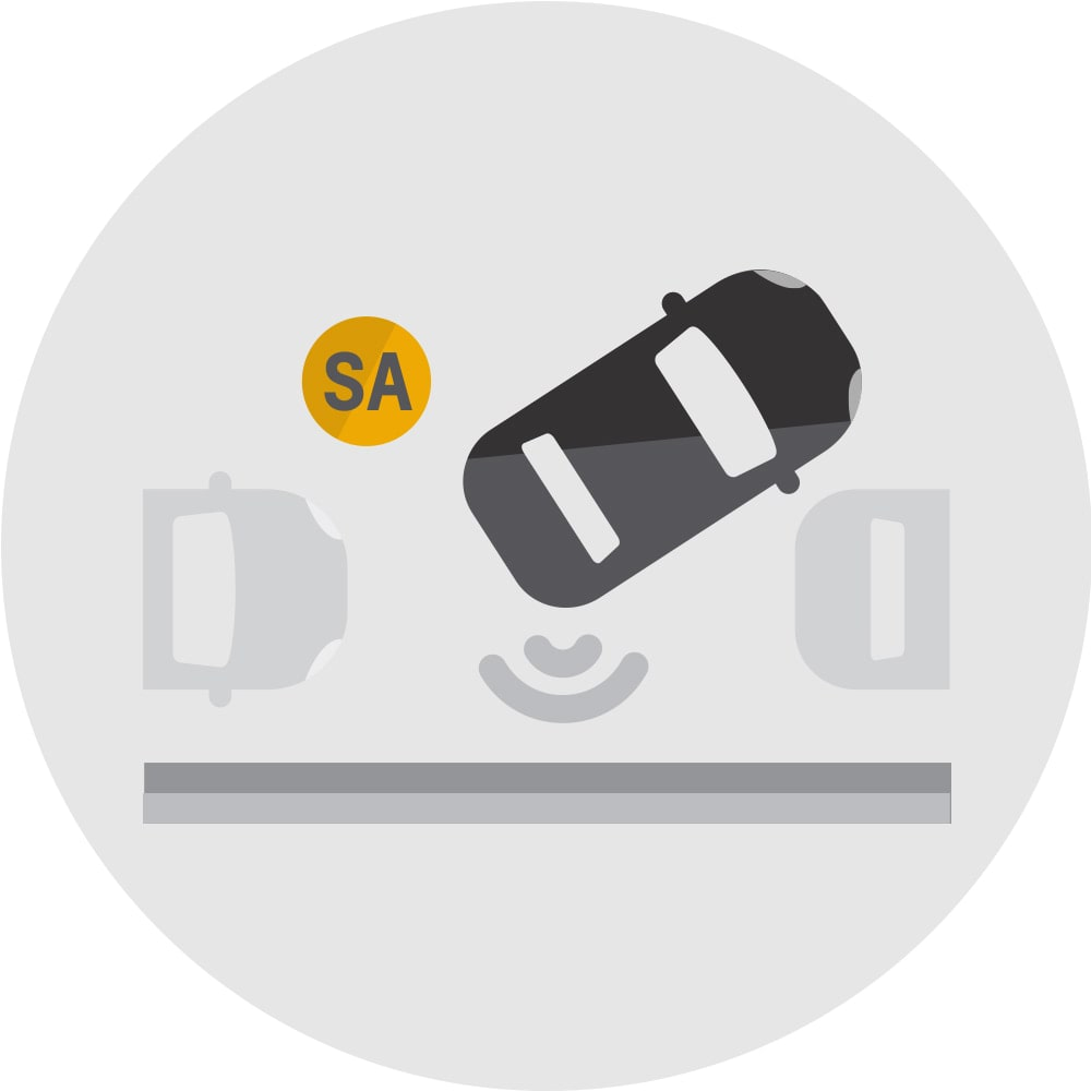 Automatic Parking Assist icon.